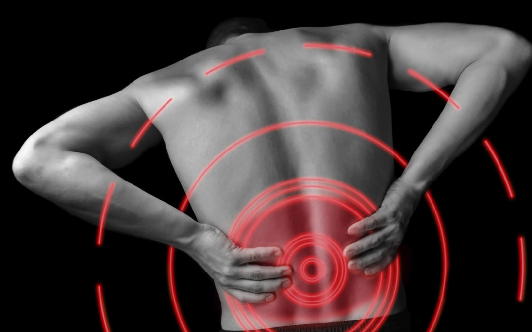 Connecting the dots: Intradiscal pressure and inflammation